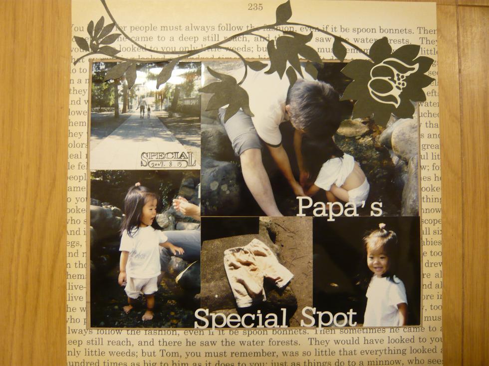 Papas_special_spot